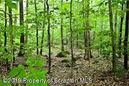 Aston Mountain Rd, Spring Brook Twp, Pennsylvania 18444, ,Land,For Sale,Aston Mountain,19-3501