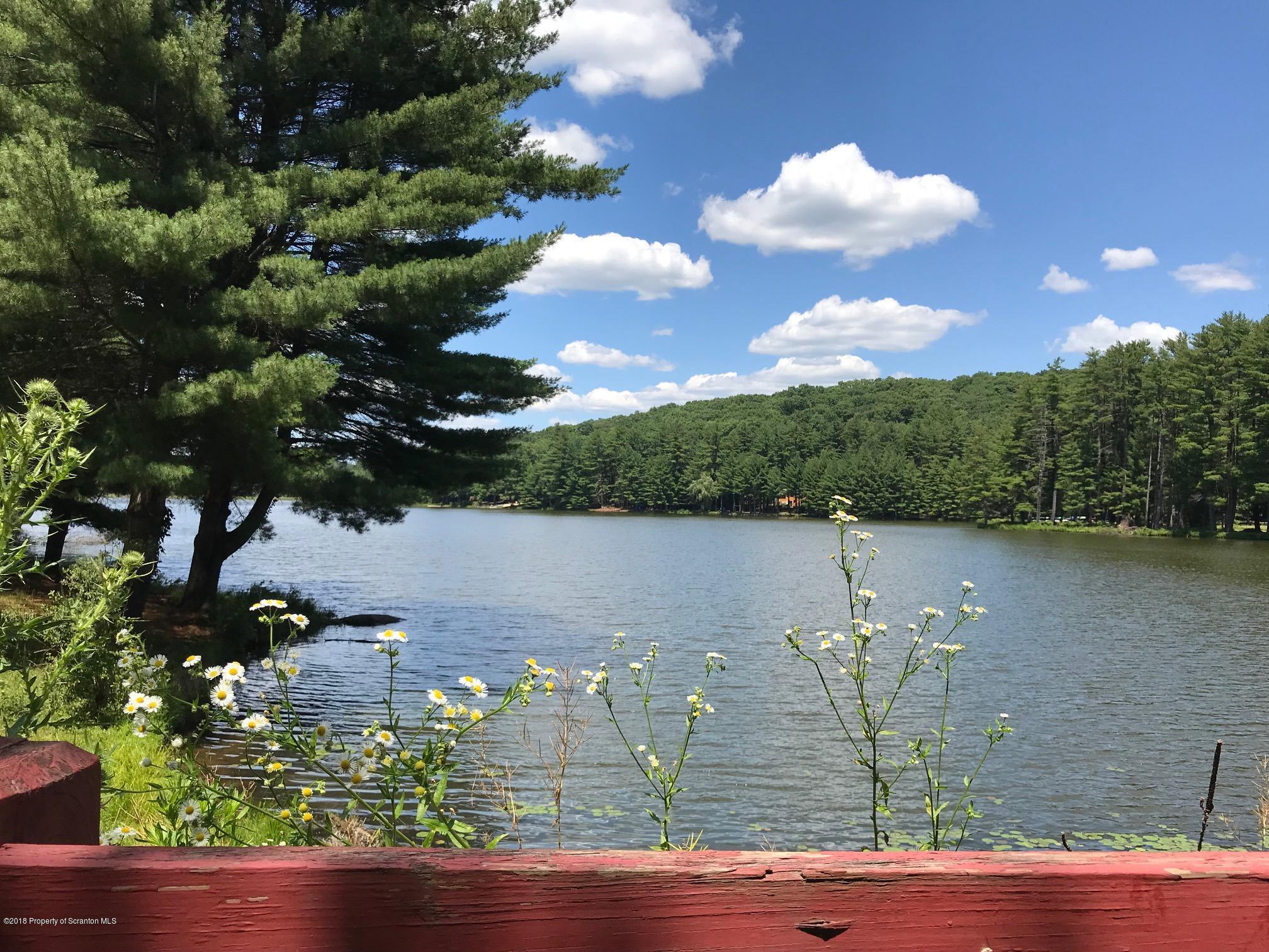 Woodledge E Lake Dr, Hawley, Pennsylvania 18428, ,Land,For Sale,Woodledge E Lake,19-3909
