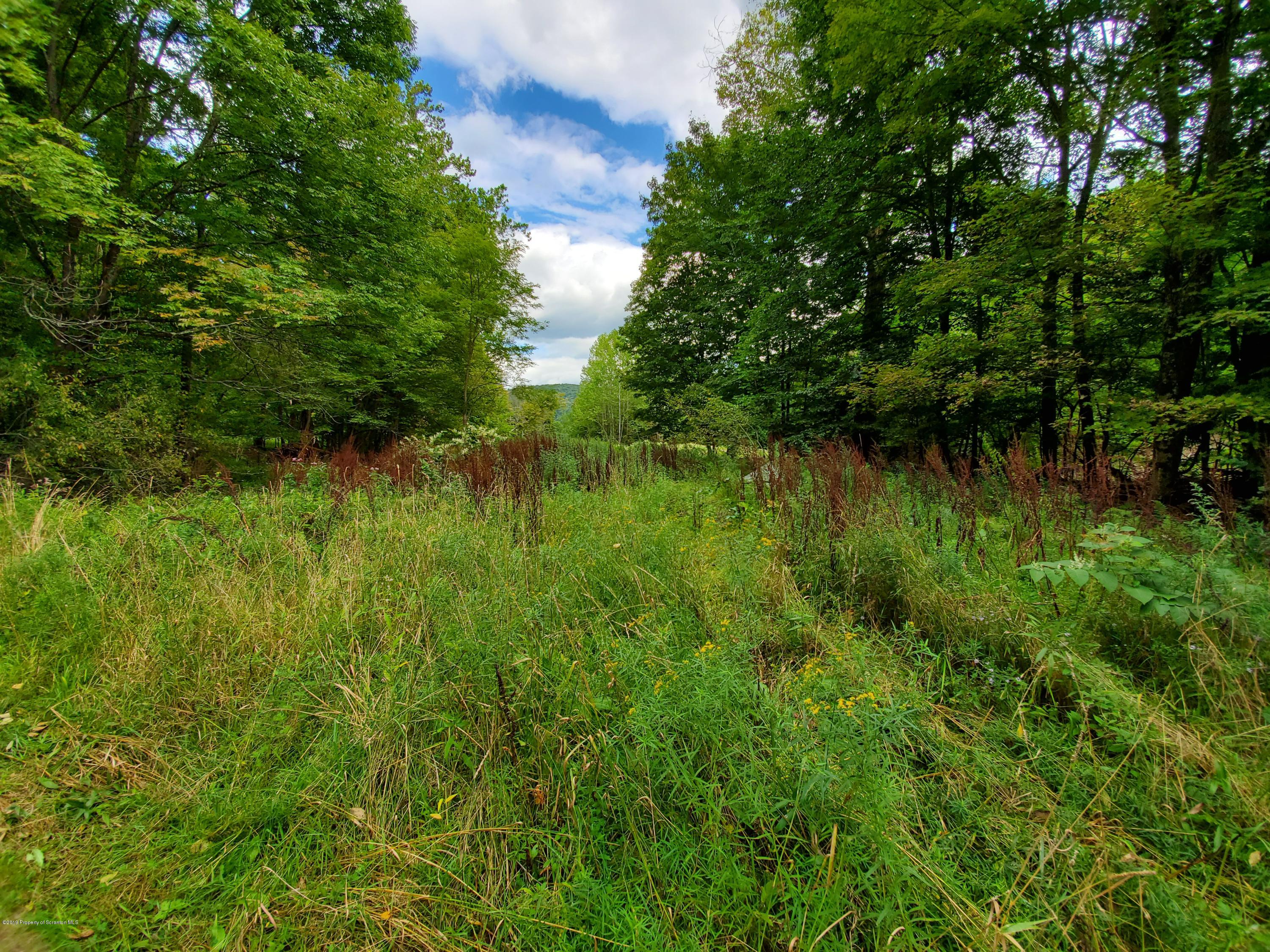 Silver Creek Rd, Montrose, Pennsylvania 18801, ,Land,For Sale,Silver Creek Rd,19-4214