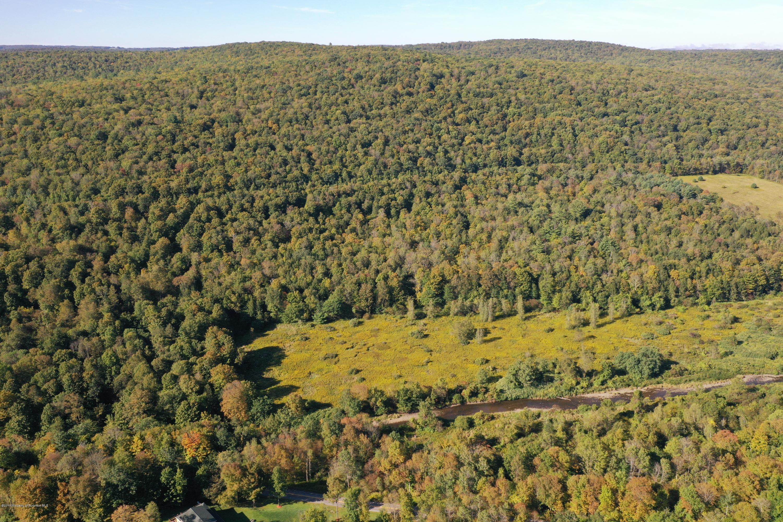 Starrucca CreekRd Thompson Twp, Thompson, Pennsylvania 18465, ,Land,For Sale,Starrucca CreekRd Thompson Twp,19-4298
