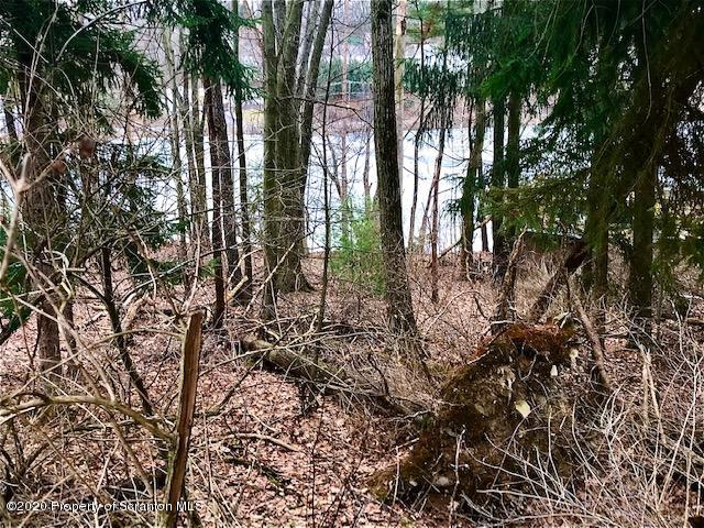 14 Lakeside Dr, Clarks Summit, Pennsylvania 18411, ,Land,For Sale,Lakeside,20-480
