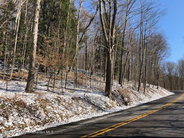 Old State Rd, Waverly Twp, Pennsylvania 18411, ,Land,For Sale,Old State,20-621