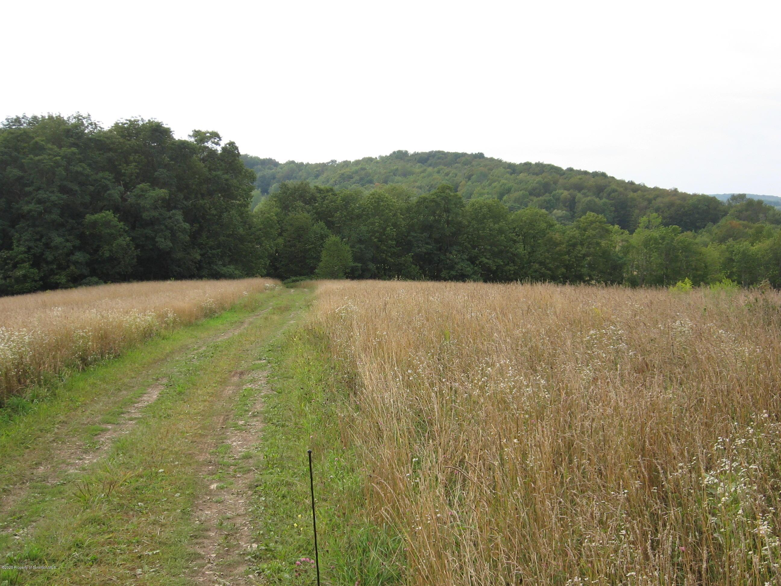 Lower Rhiney Creek Road, Brackney, Pennsylvania 18812, ,Land,For Sale,Lower Rhiney Creek Road,20-890