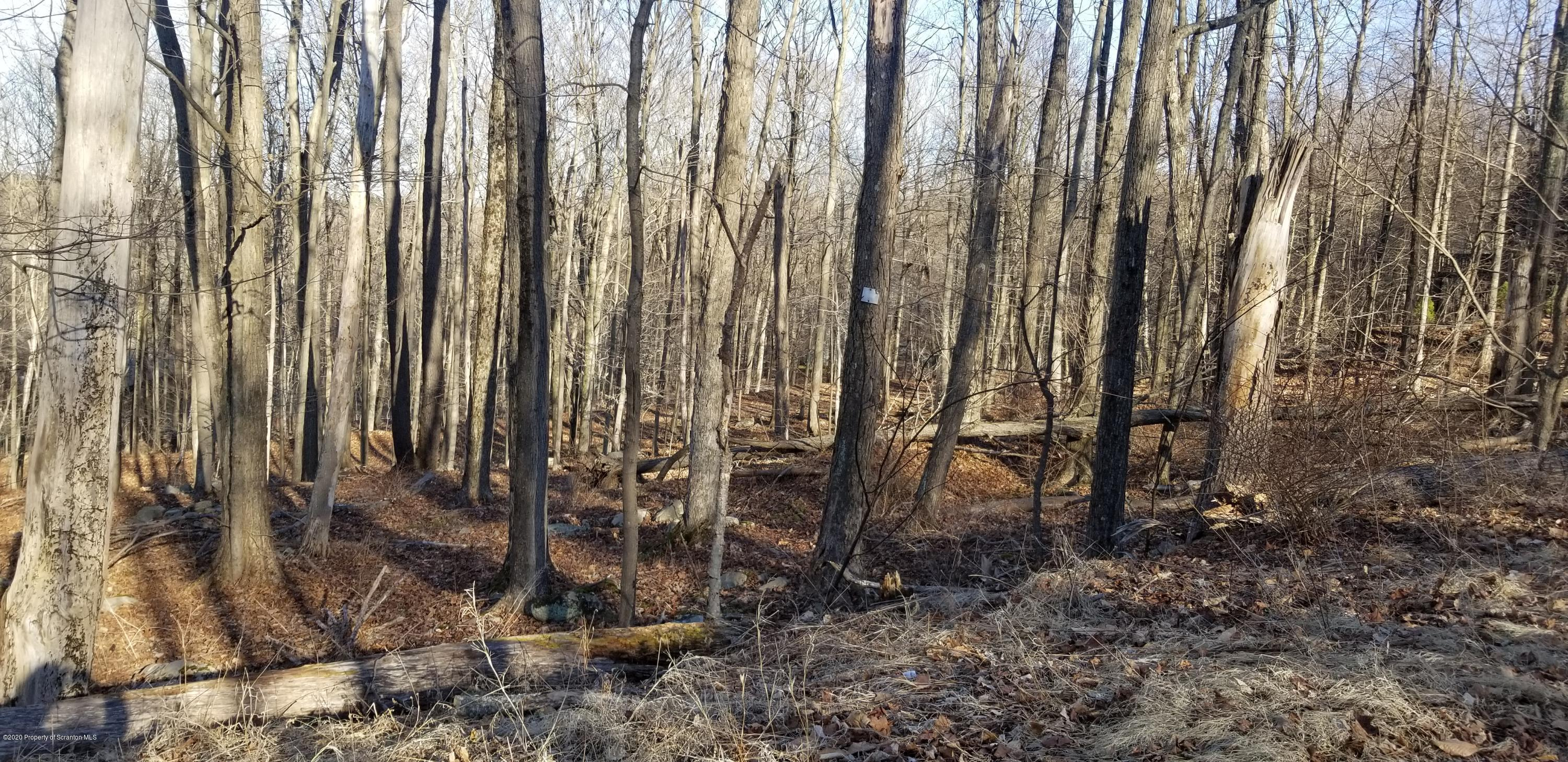 Lot 166 Mountainside Dr, Gouldsboro, Pennsylvania 18424, ,Land,For Sale,Mountainside,20-1144