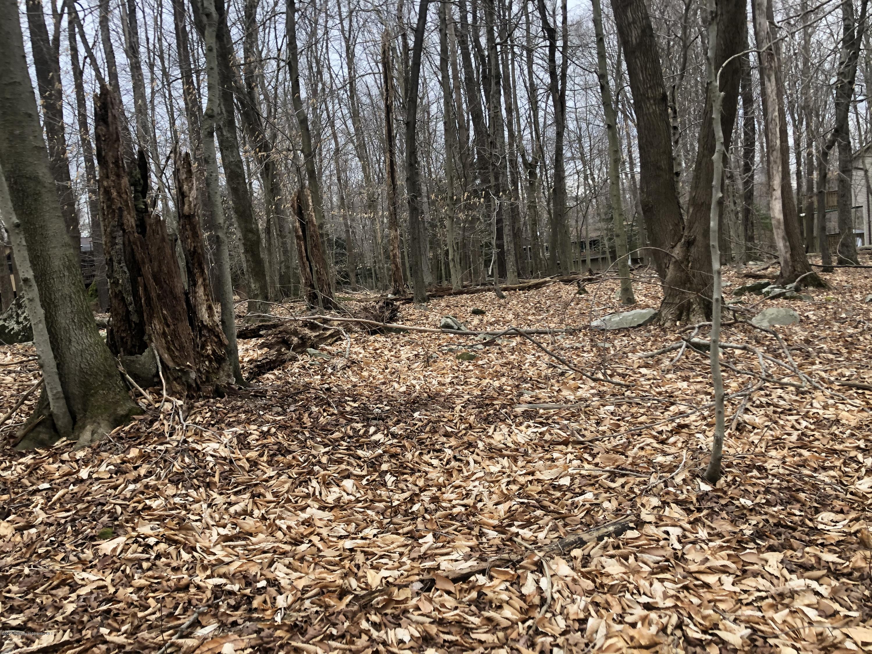 34 Maple Drive, Gouldsboro, Pennsylvania 18424, ,Land,For Sale,Maple,20-1230