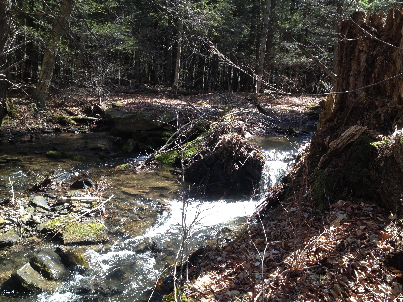 Spruce Lake Rd., Lakewood, Pennsylvania 18439, ,Land,For Sale,Spruce Lake,20-1293