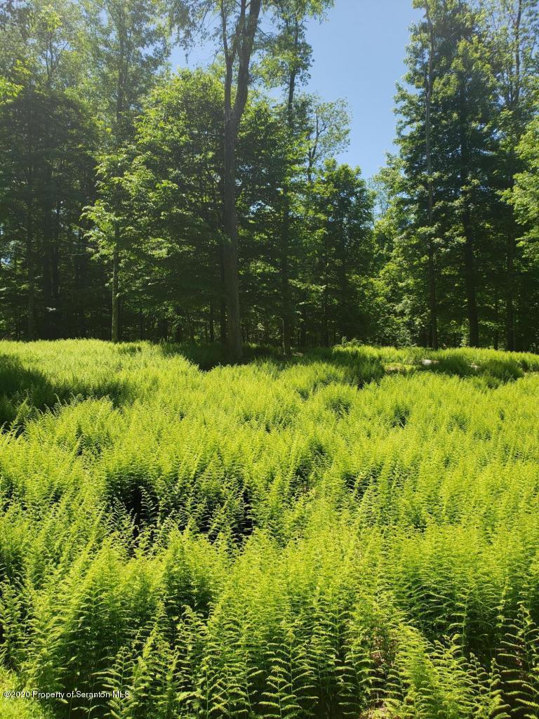 128 Mountain Dr, Greentown, Pennsylvania 18426, ,Land,For Sale,Mountain,20-2121