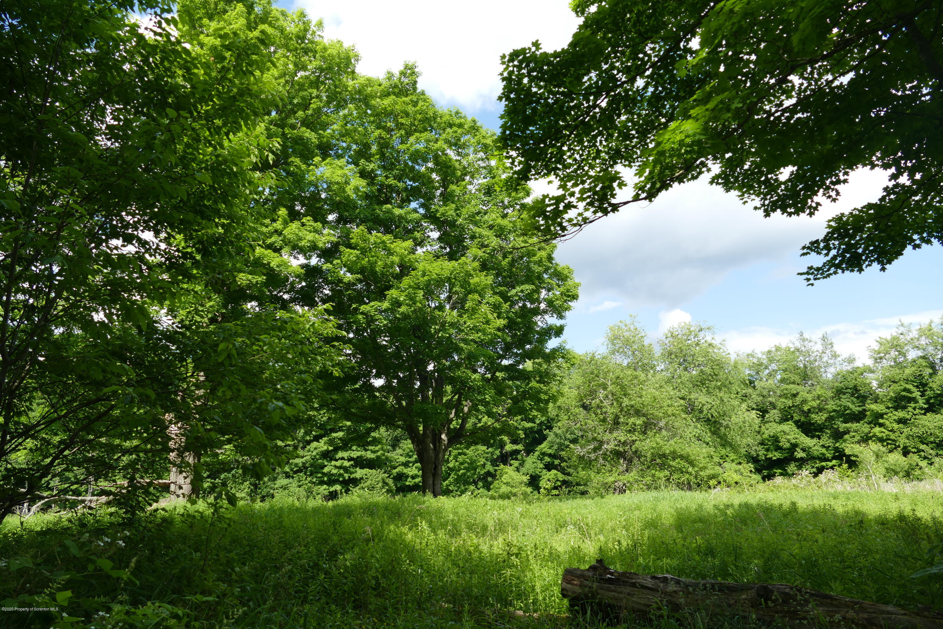 742 May Rd., Thompson, Pennsylvania 18465, ,Land,For Sale,May,20-2202