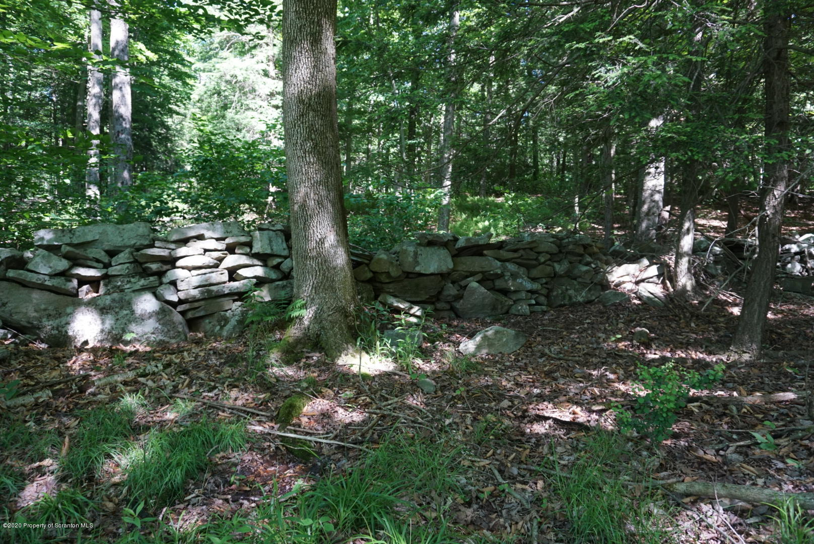 Old Greentown Rd, Greentown, Pennsylvania 18426, ,Land,For Sale,Old Greentown,20-2216