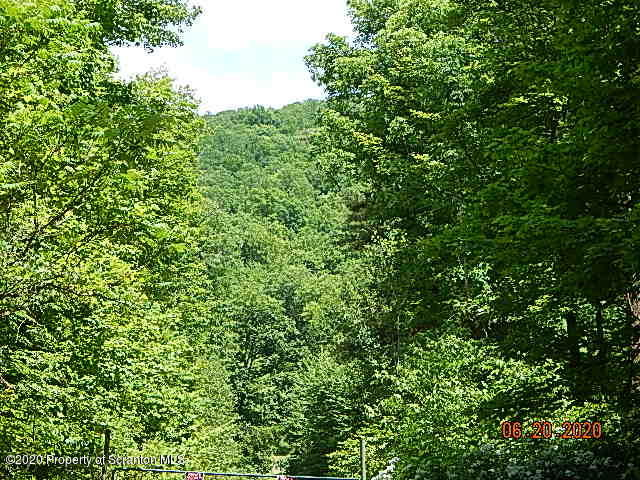 897 Towner Road, Susquehanna, Pennsylvania 18847, ,Land,For Sale,Towner Road,20-2240