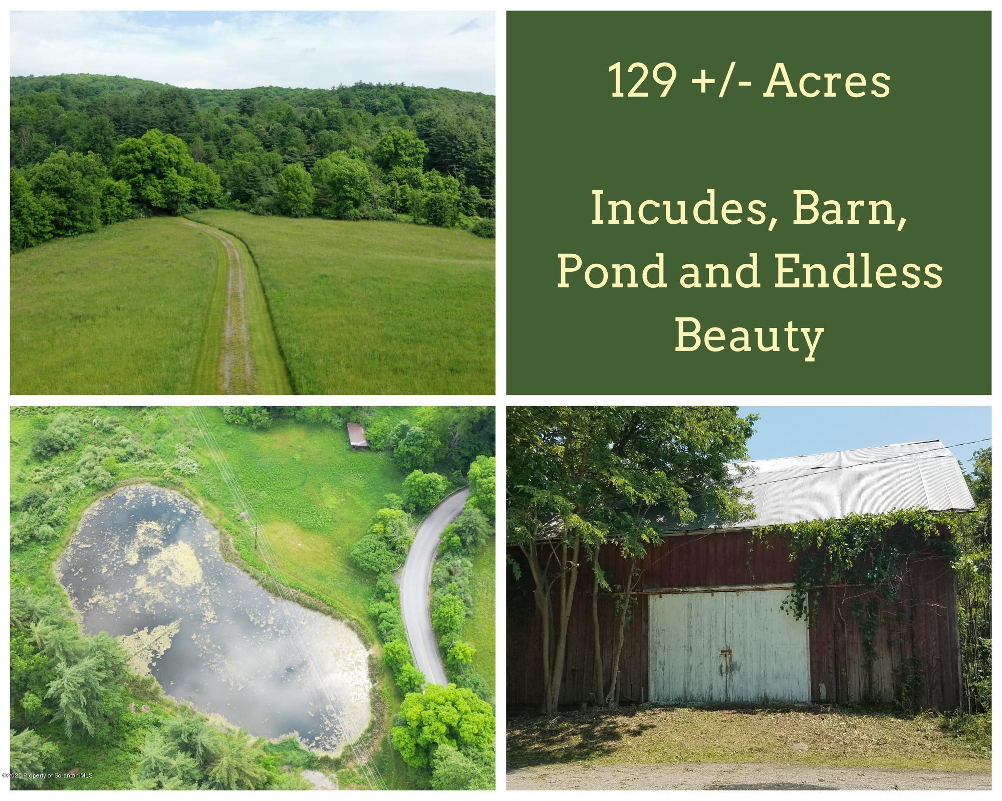0 Rattlesnake Hill Road, Meshoppen, Pennsylvania 18630, ,Land,For Sale,Rattlesnake Hill,20-2410