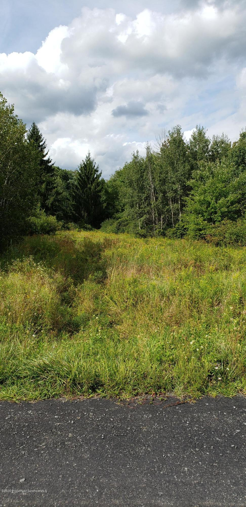 T 593 West Grove Road, Newton Twp, Pennsylvania 18411, ,Land,For Sale,T 593 West Grove,20-3604