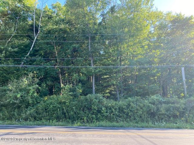 SR 307, Lake Winola, Pennsylvania 18625, ,Land,For Sale,SR 307,20-3745