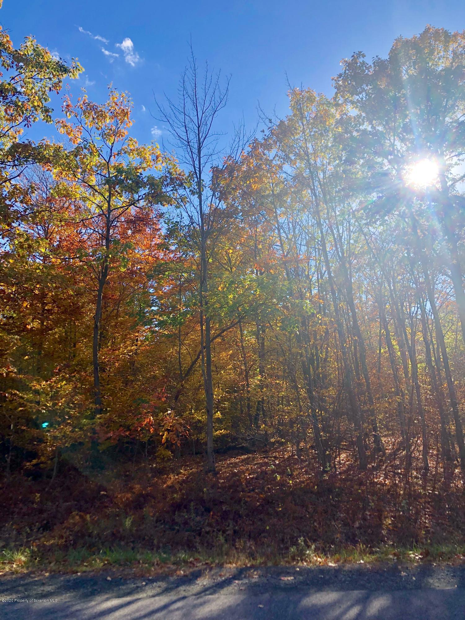 L 193 Highland Rd, Roaring Brook Twp, Pennsylvania 18444, ,Land,For Sale,Highland,20-4428