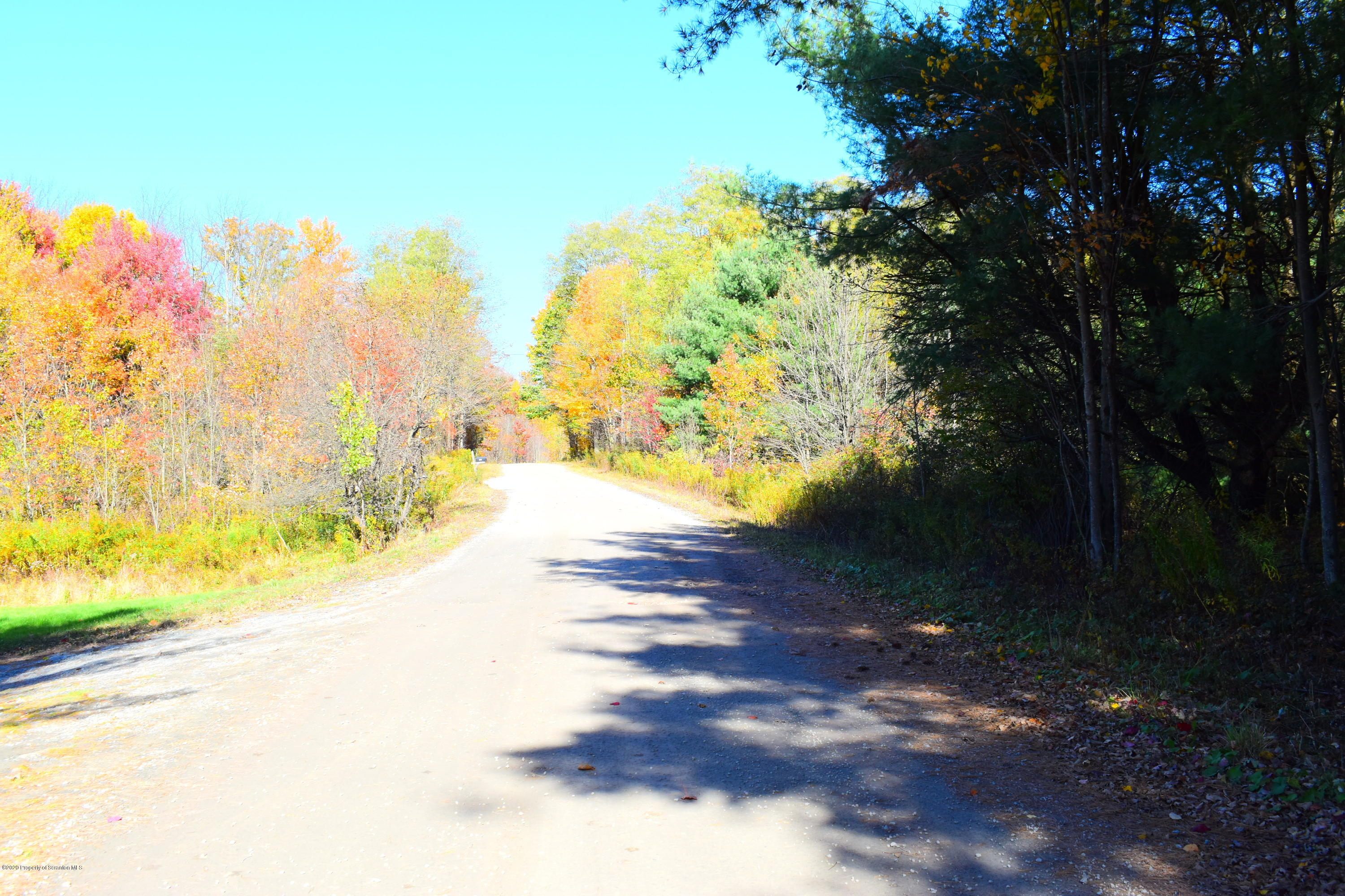 Rice Road, New Milford, Pennsylvania 18834, ,Land,For Sale,Rice Road,20-4442