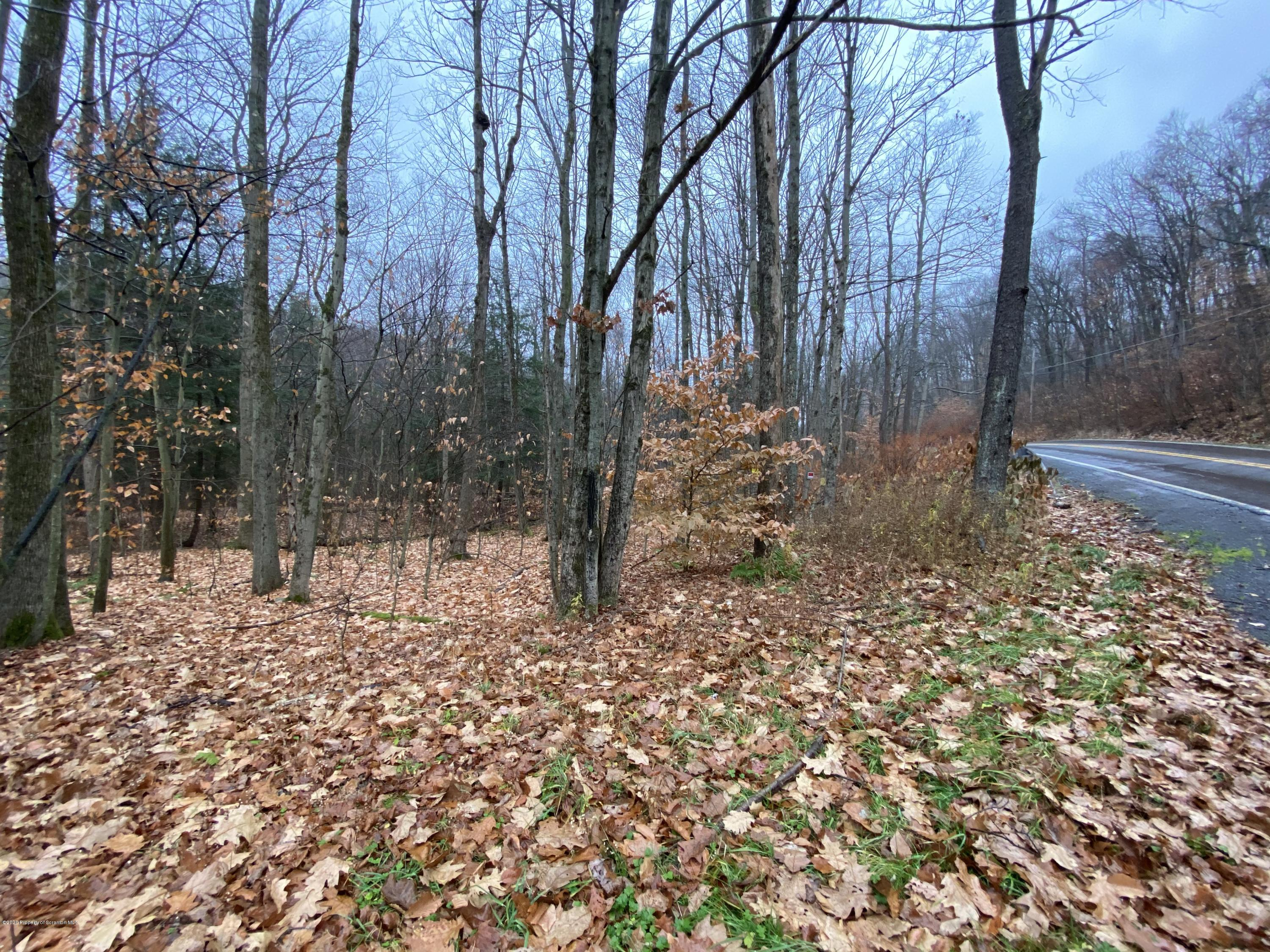 Route 247, Browndale, Pennsylvania 18421, ,Land,For Sale,Route 247,20-4926