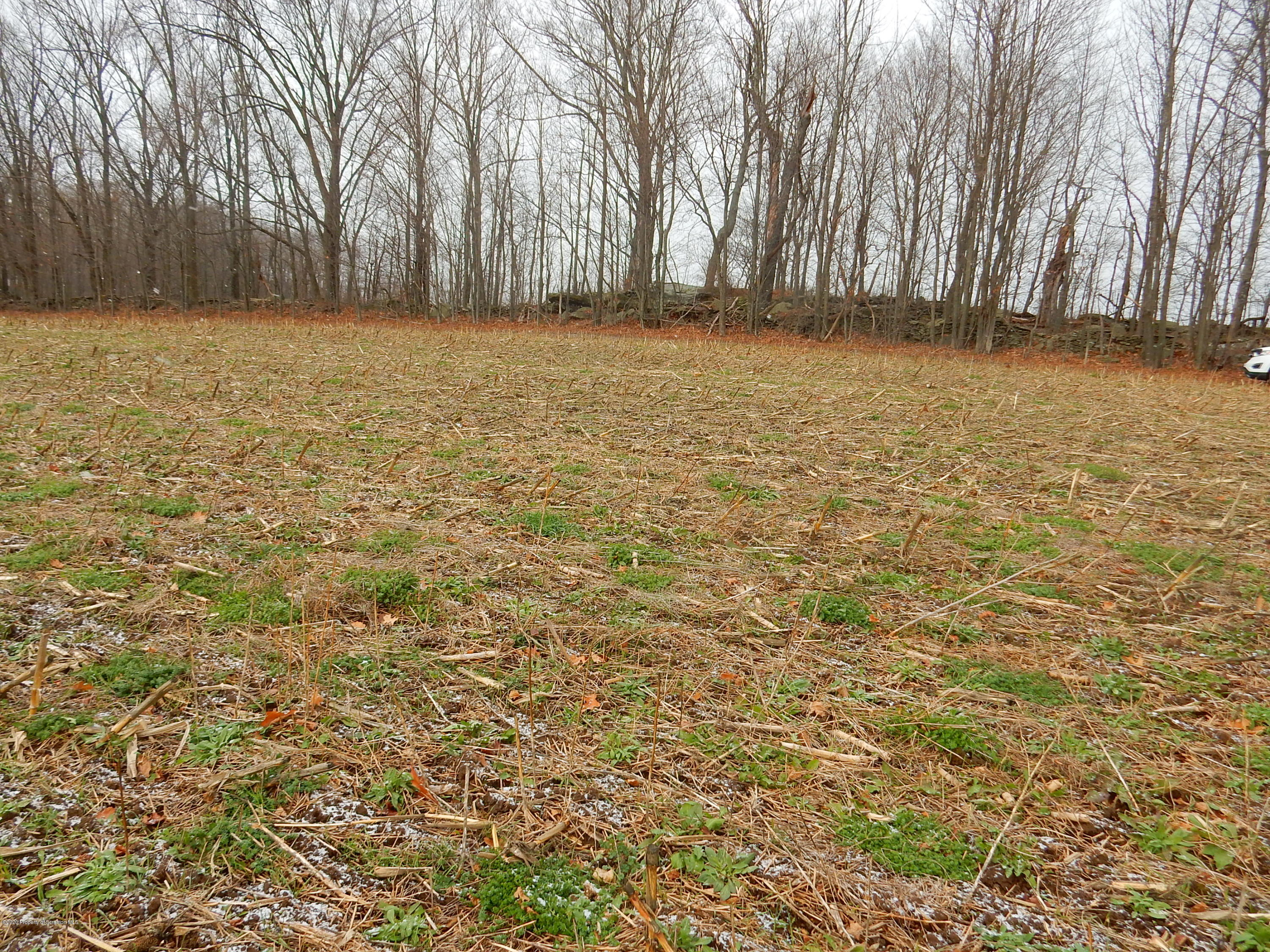 Lot 2 Matechak Rd, Jermyn, Pennsylvania 18433, ,Land,For Sale,Matechak,20-4946