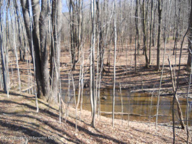 Hunter Lane, Scott Twp, Pennsylvania 18411, ,Land,For Sale,Hunter,20-4971