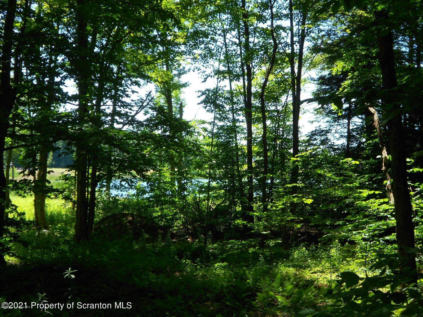 Lot 14 Prince Edward Dr, Gouldsboro, Pennsylvania 18424, ,Land,For Sale,Prince Edward,21-1027