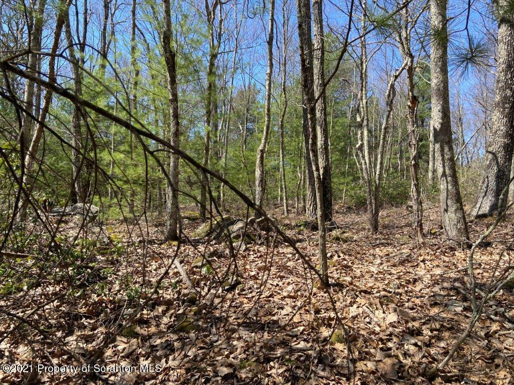 0 Willow Road, Woodledge Village, Hawley, Pennsylvania 18428, ,Land,For Sale,Willow Road, Woodledge Village,21-1351