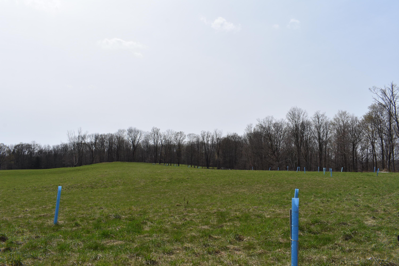 00 Olszewski Road, Montrose, Pennsylvania 18801, ,Land,For Sale,Olszewski,21-1605