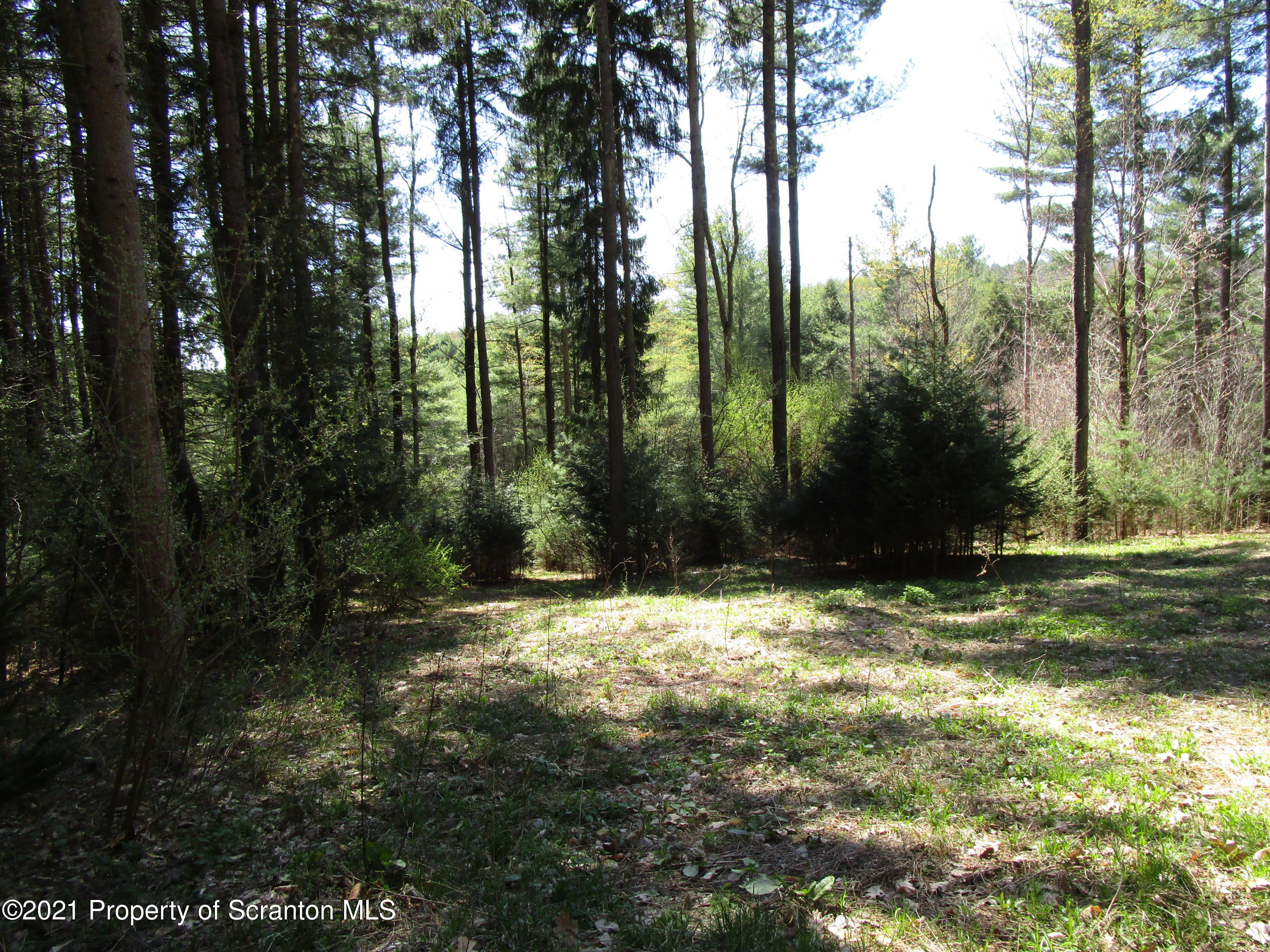 9003 Wyalusing New Albany Rd, Wyalusing, Pennsylvania 18853, ,Land,For Sale,Wyalusing New Albany,21-1641