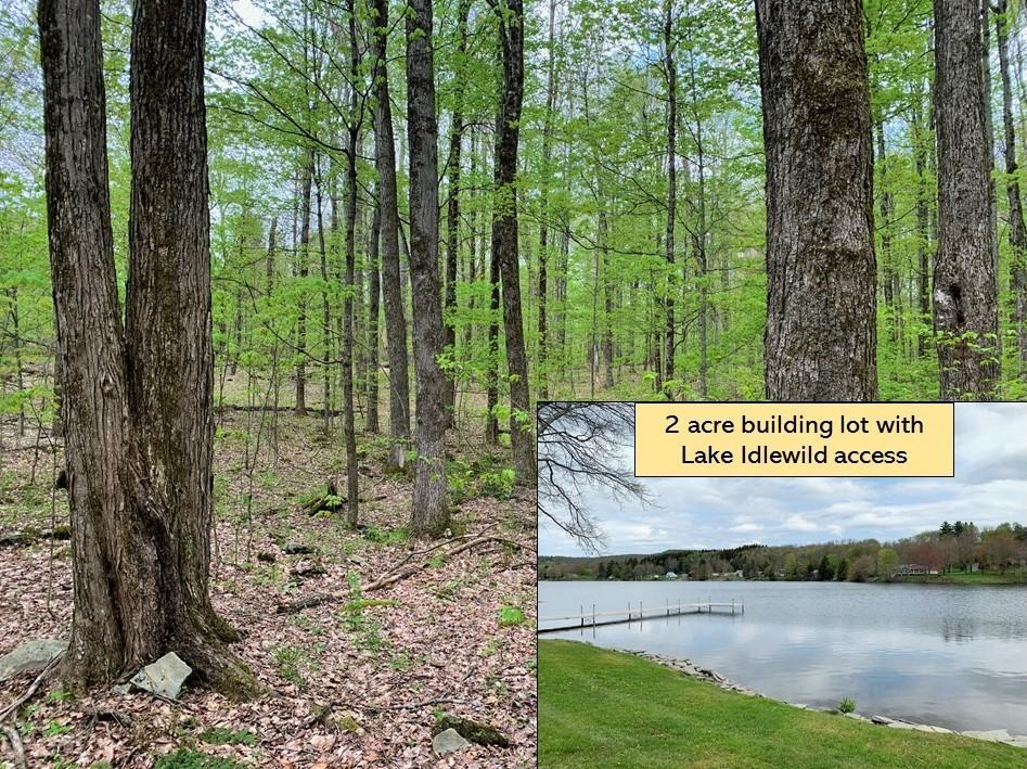 Lot #17 Bulletwood Drive, Clifford Twp, Pennsylvania 18470, ,Land,For Sale,Bulletwood Drive,21-1697