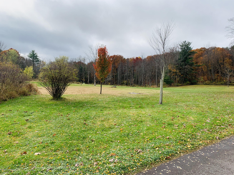 Woods Dr, Dalton, Pennsylvania 18414, ,Land,For Sale,Woods,21-3003