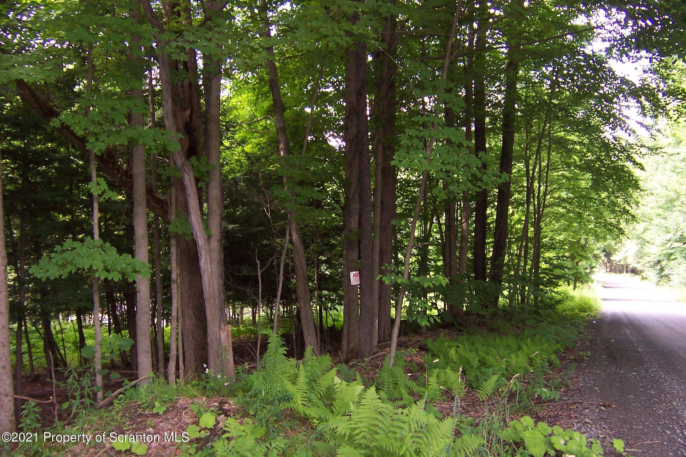 691-627 Bronson Hill Rd, New Milford, Pennsylvania 18834, ,Land,For Sale,Bronson Hill Rd,21-3107
