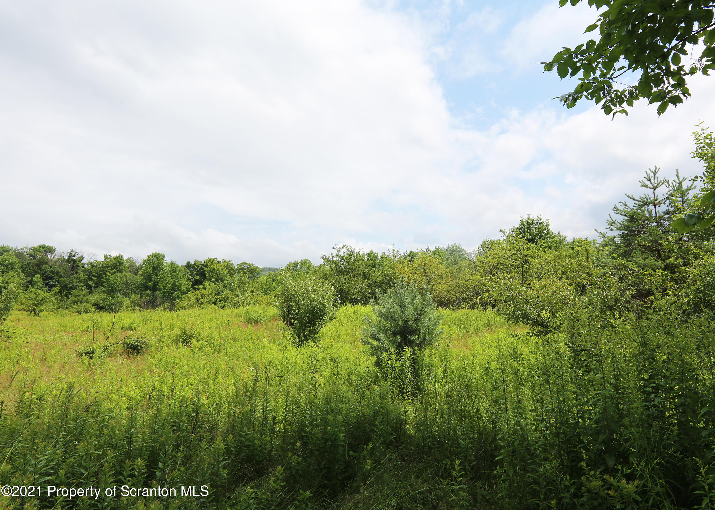 34 Fortenia Heights, Honesdale, Pennsylvania 18431, ,Land,For Sale,Fortenia Heights,21-3144