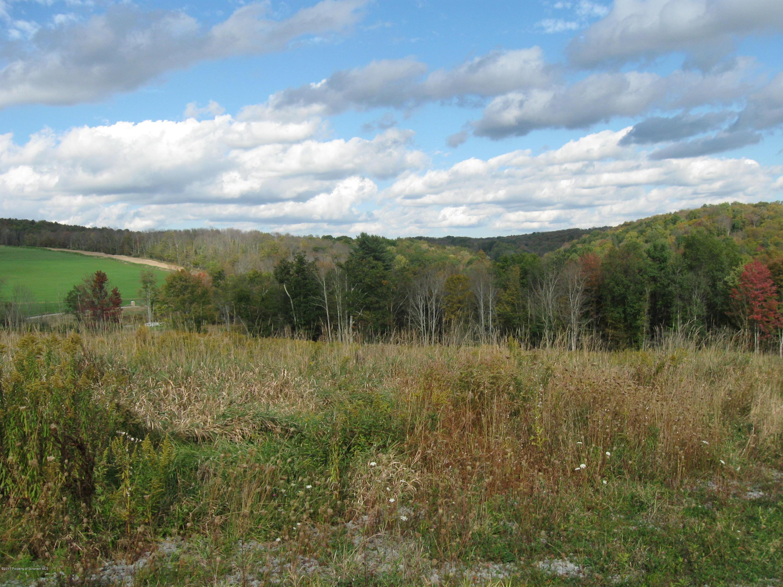 SR 3023, Montrose, Pennsylvania 18801, ,Land,For Sale,SR 3023,21-3424