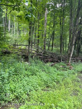 PA-171, Clifford Twp, Pennsylvania 18421, ,Land,For Sale,PA-171,21-3426