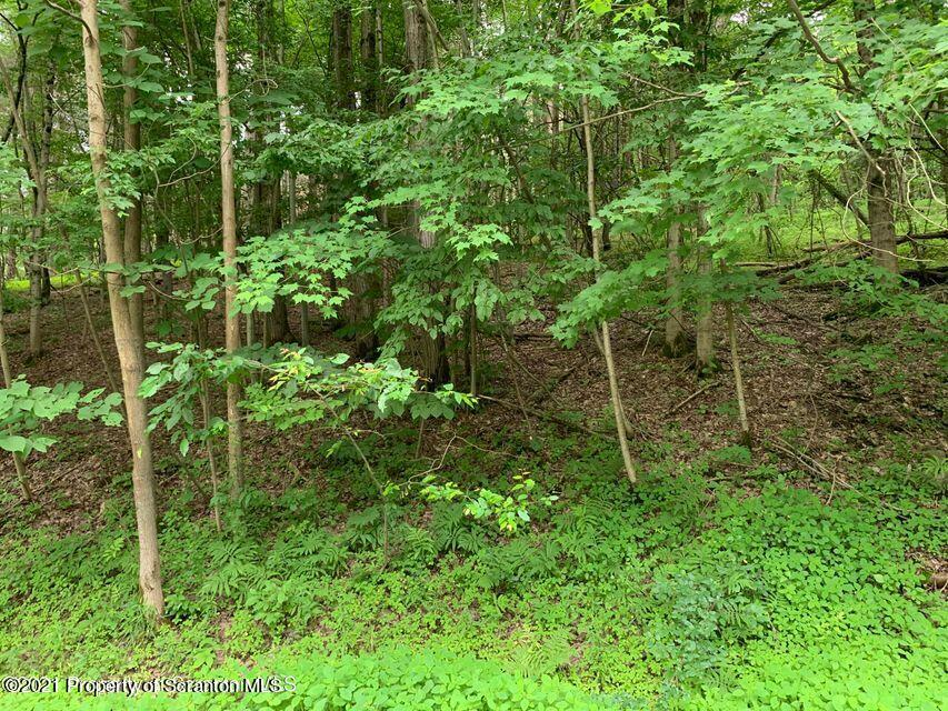 12301 State Route 858, Little Meadows, Pennsylvania 18830, ,Land,For Sale,State Route 858,21-3451