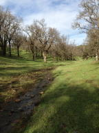 Property for sale at Palo Cedro,  CA 96073