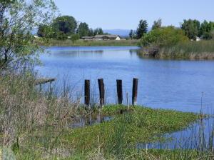 Terreno por un Venta en 25941 GLENBURN Road Fall River Mills, California 96028 Estados Unidos