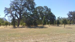Land for Sale at Wells Fargo Way Corning, California 96021 United States