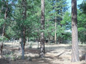 Land for Sale at 21660 Kern Road Cassel, California 96016 United States
