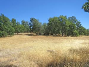 Land for Sale at 40 acres off Blue Sky Road Bella Vista, California 96008 United States