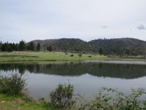 Land for Sale at Ponderosa Way Manton, California 96059 United States