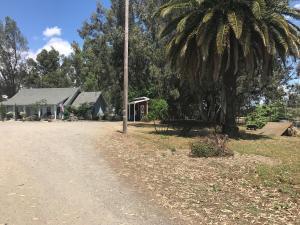 Single Family Home for Sale at 22210 O Avenue Corning, California 96021 United States