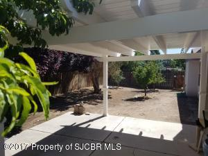 BACK PATIO/ FRUIT TREES