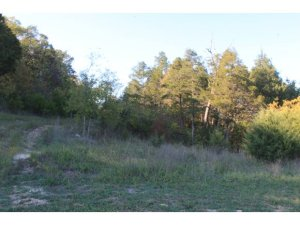 Comm Lots Deer Valley Branson Mo 65616 Unit Lots 17 18 20