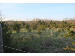 Tbd Coon Creek Kirbyville Mo 65679