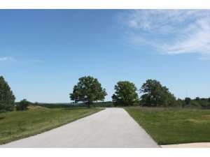 Lot 19 Vista Saddlebrooke Mo 65630