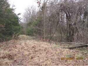 Tbd Lawrence Merriam Woods Mo 65740