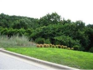 Lot 8 Cottonwood Branson Mo 65616