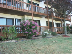 1705 Paradise Landing Kimberling City Mo 65686 Unit 7
