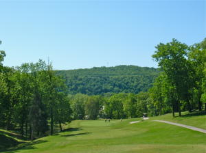 200 Golfview Branson Mo 65616 Unit 3