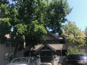 129 Treehouse Branson Mo 65616