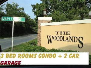 310 South Woodland Branson Mo 65616 Unit 1B